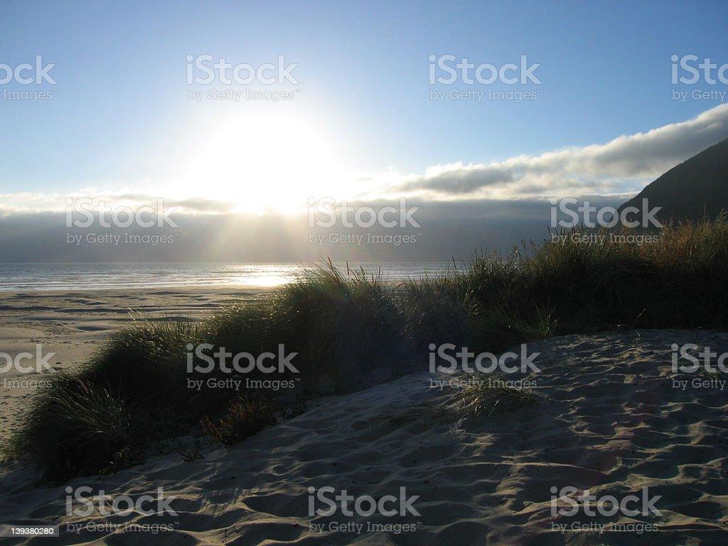 Manzanita Dunes royalty-free stock photo