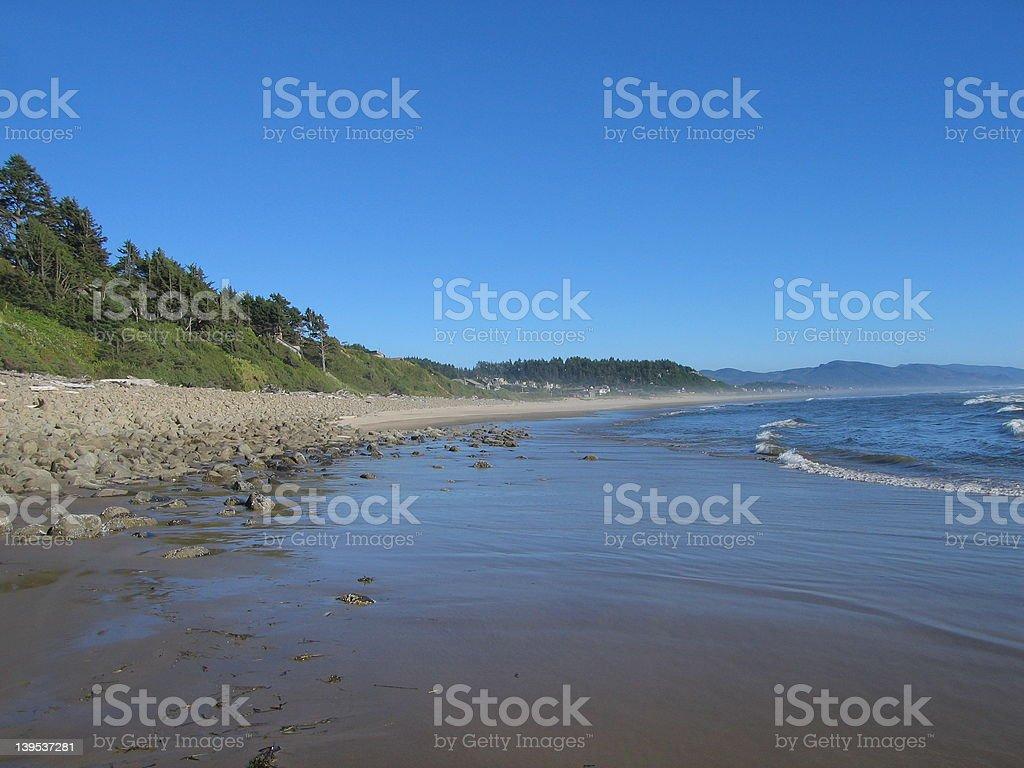 Manzanita surf royalty-free stock photo