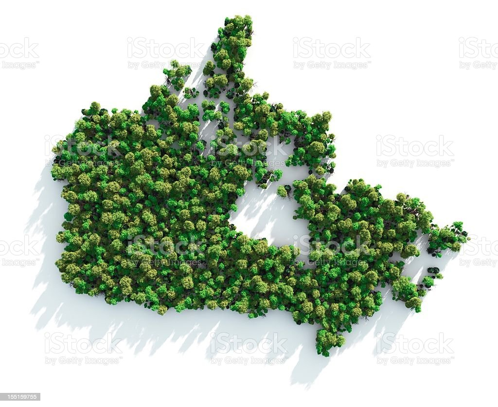 Map of Canada formed by trees on white background royalty-free stock photo