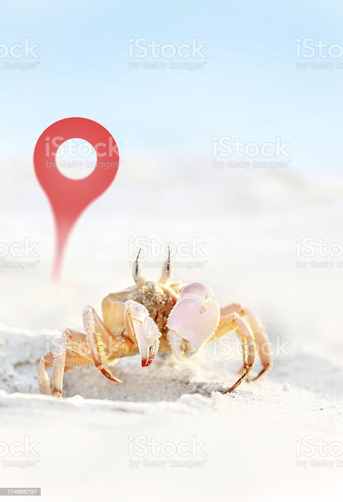 map pin next to crap in tropical setting royalty-free stock photo