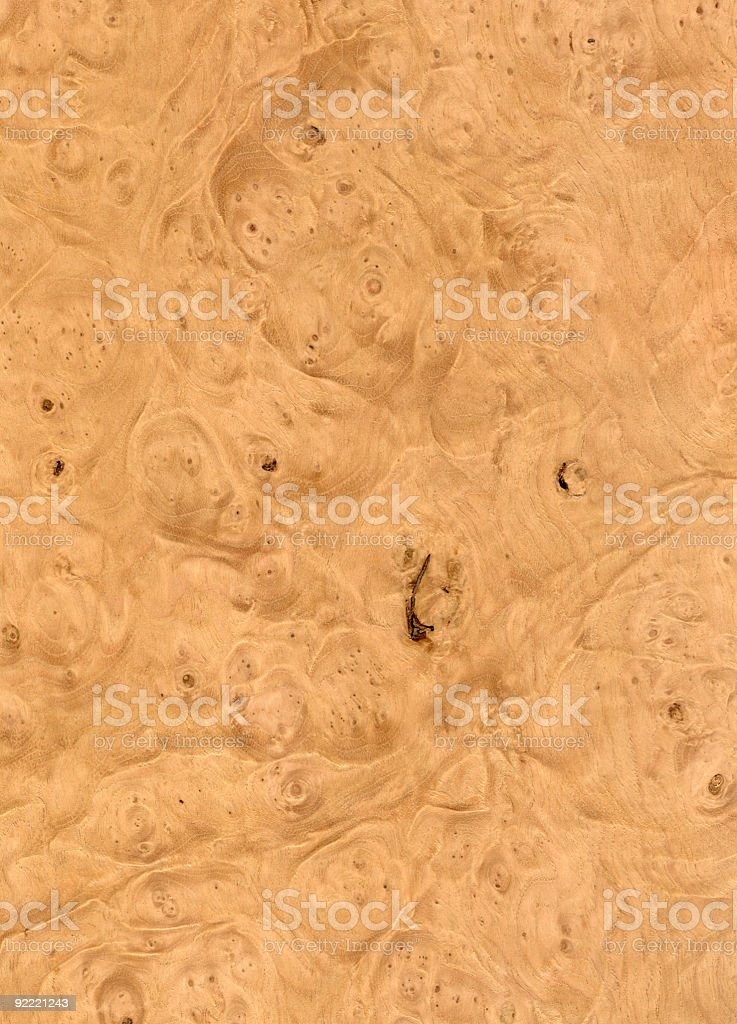 Maple Burl - Wood Texture Series royalty-free stock photo