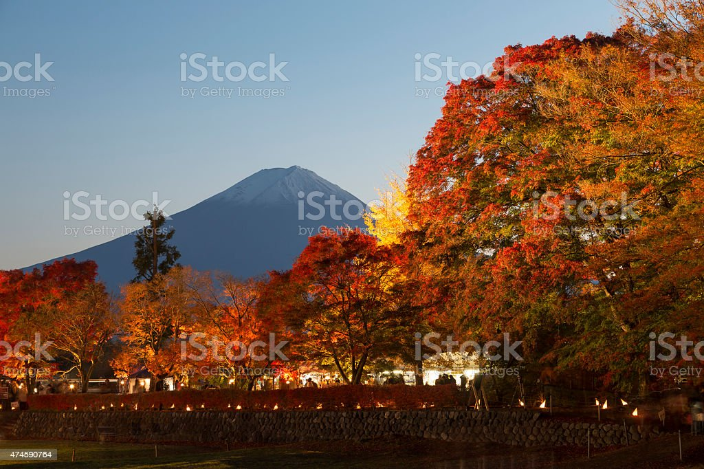 Maple Corridor at Nashigawa river, Japan stock photo