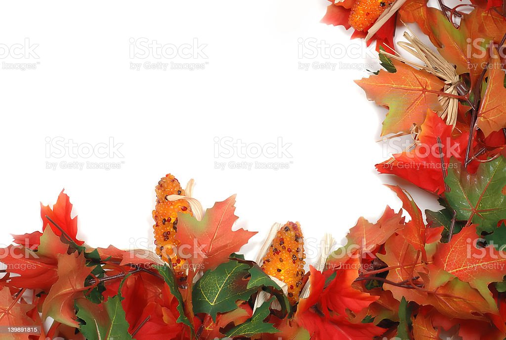 maple leafs and corn - Thanksgiving decoration, border royalty-free stock photo