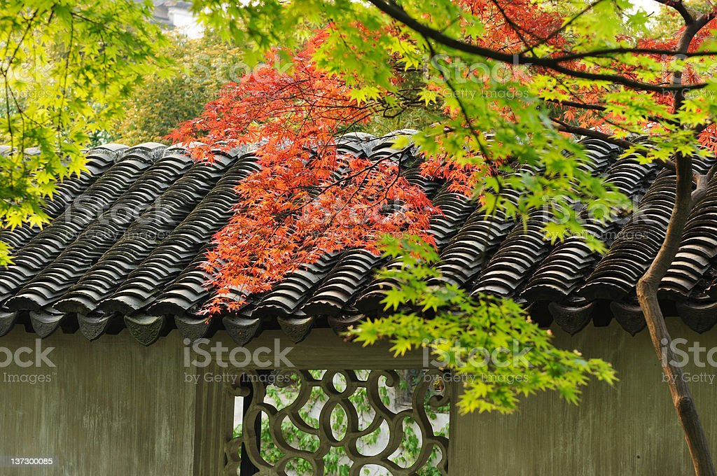 Maple Leaves and Old Tiled Roof royalty-free stock photo