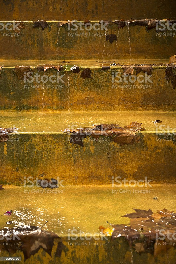 Maple Leaves Fallen On The Steps Of A Fountain royalty-free stock photo