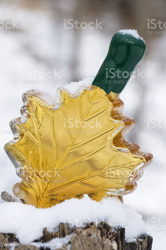 Maple syrup bottle royalty-free stock photo