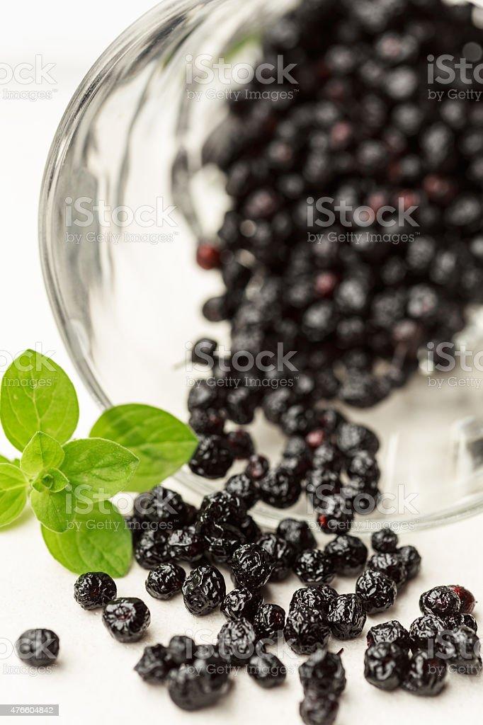 Maqui berries stock photo