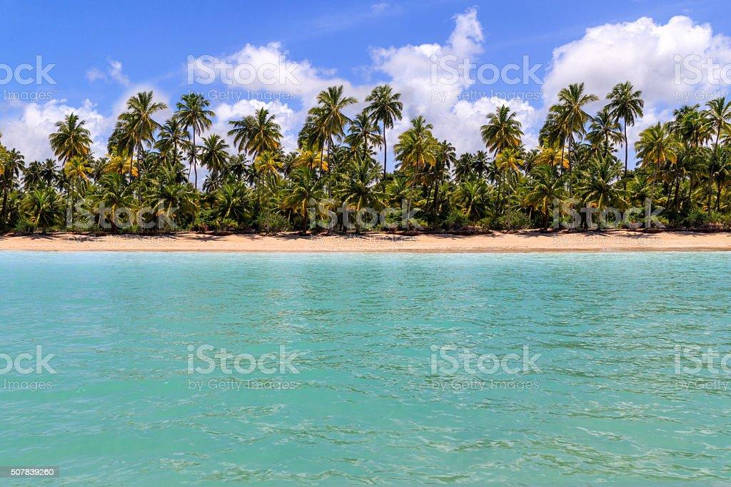 Maragogi beach horizon at Alagoas, Brazil stock photo