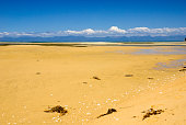Marahau beach