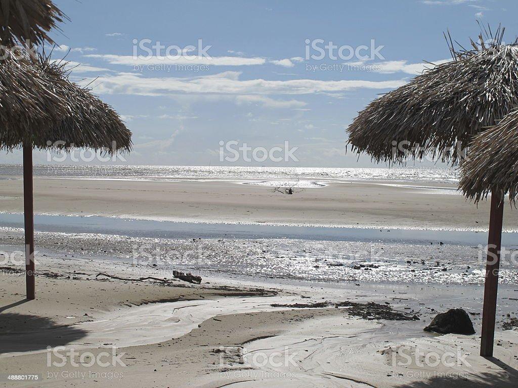marajo playa stock photo