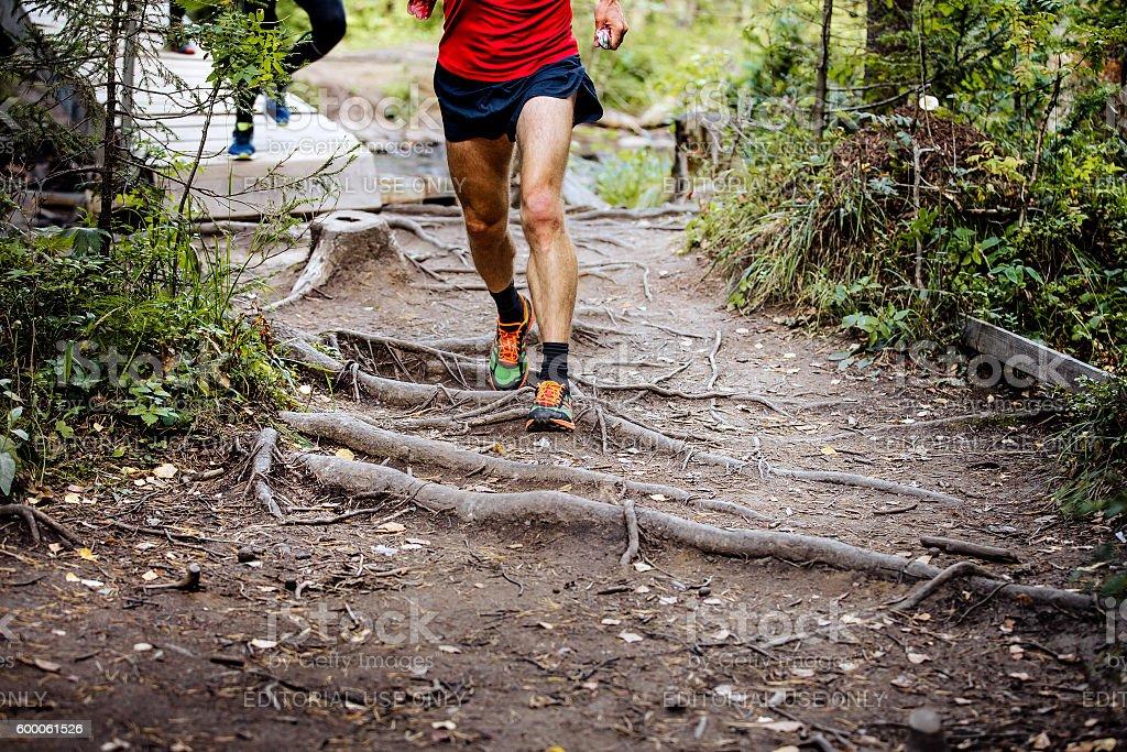 marathon runner running in woods royalty-free 스톡 사진