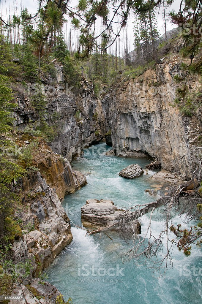 Marble Canyon in Kootenay National Park stock photo