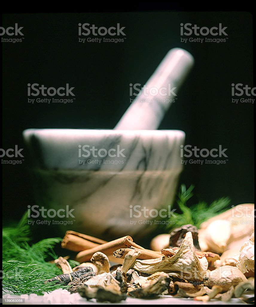 Marble pestle and mortar with herbs and dried mushrooms royalty-free stock photo