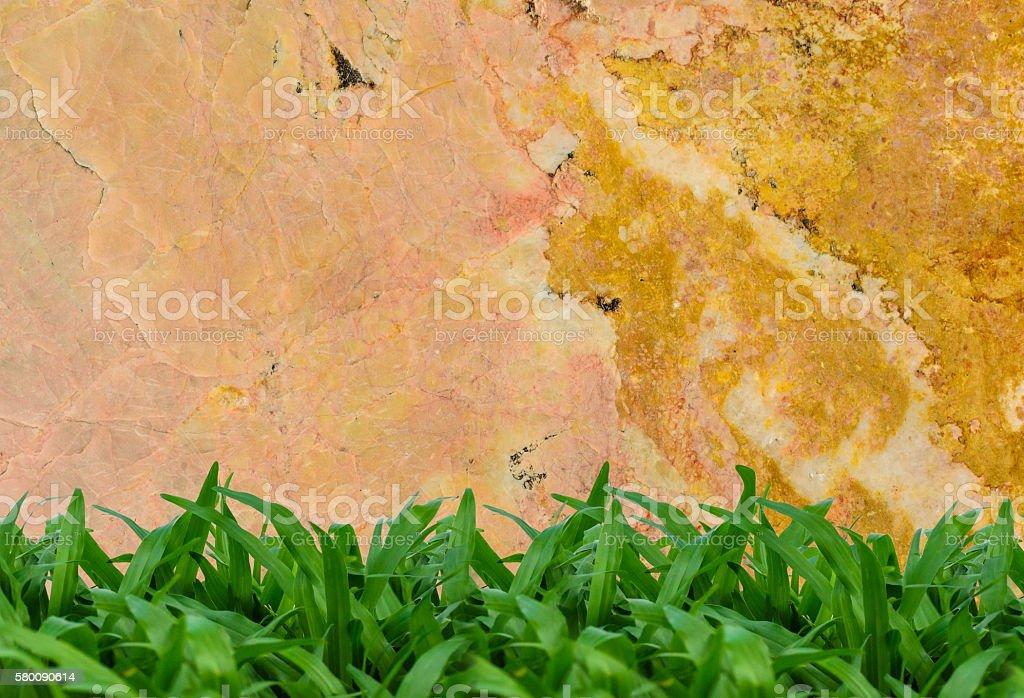 Marble texture with green grass zbiór zdjęć royalty-free