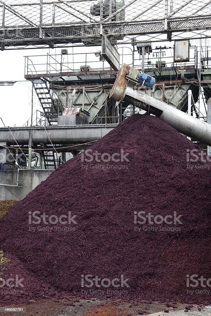 Marc or Pomace stock photo