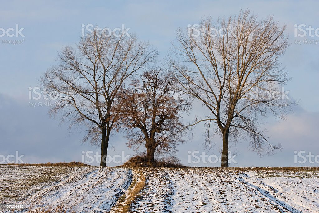 March in Poland royalty-free stock photo