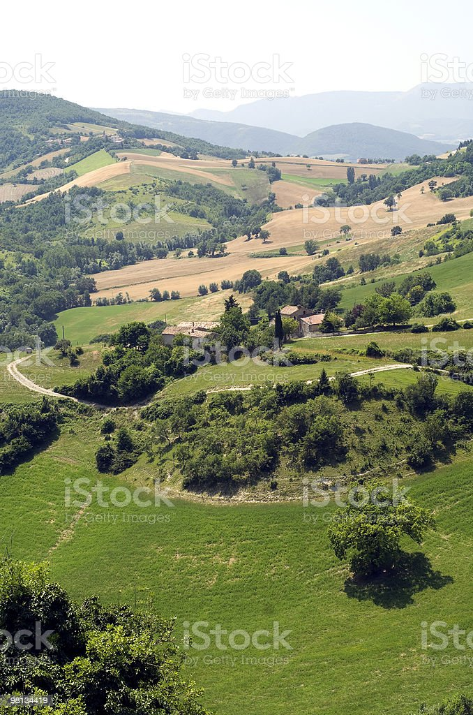 Marches (Italy) - Rural landscape at summer stock photo