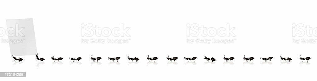 Marching Ants 02 royalty-free stock photo