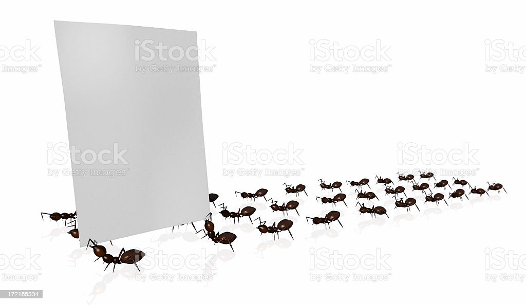 Marching ants holding up a blank, white page of paper royalty-free stock photo