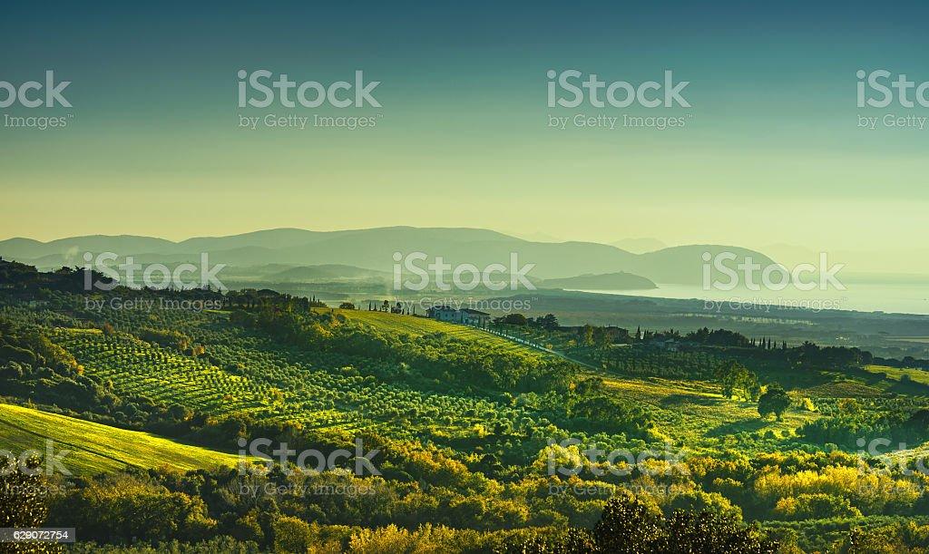 Maremma sunset panorama. Countryside, sea and Elba on horizon. S stock photo