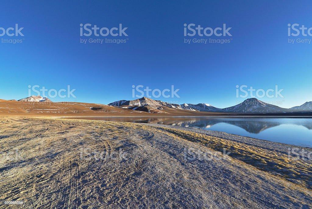 Margins of calm lake stock photo