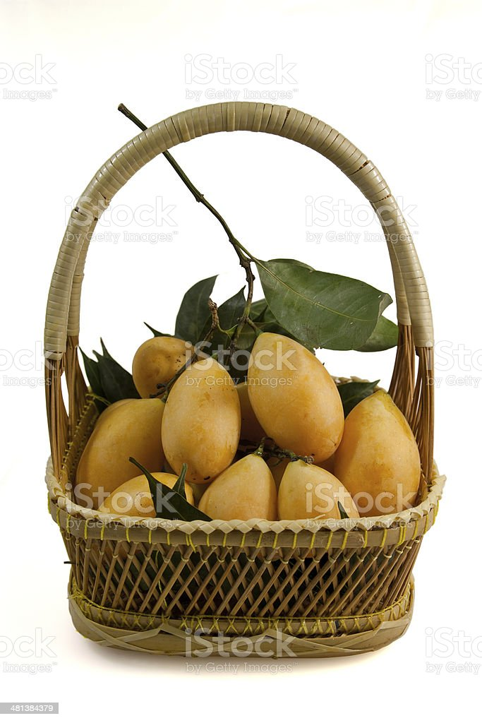 Marian Plum (Bouea macrophylla Griff) royalty-free stock photo
