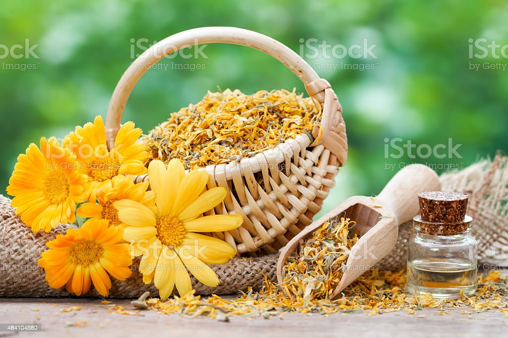 Marigold flowers, basket with dried plants and oil bottle stock photo