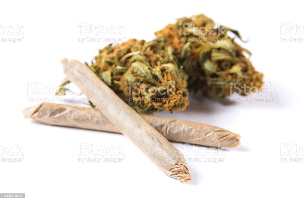 Marijuana buds and joints isolated on white background stock photo