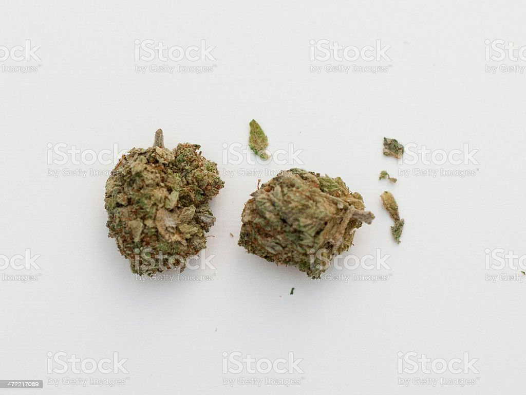 Marijuana Buds royalty-free stock photo