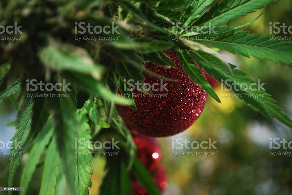 Marijuana Christams stock photo