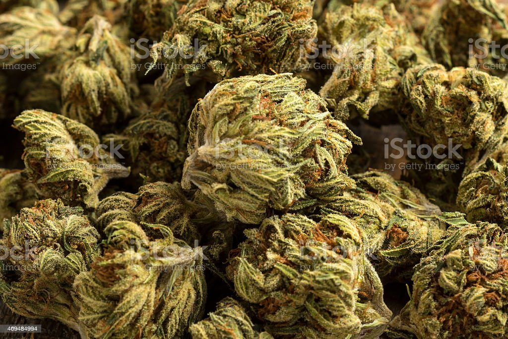 Marijuana stock photo