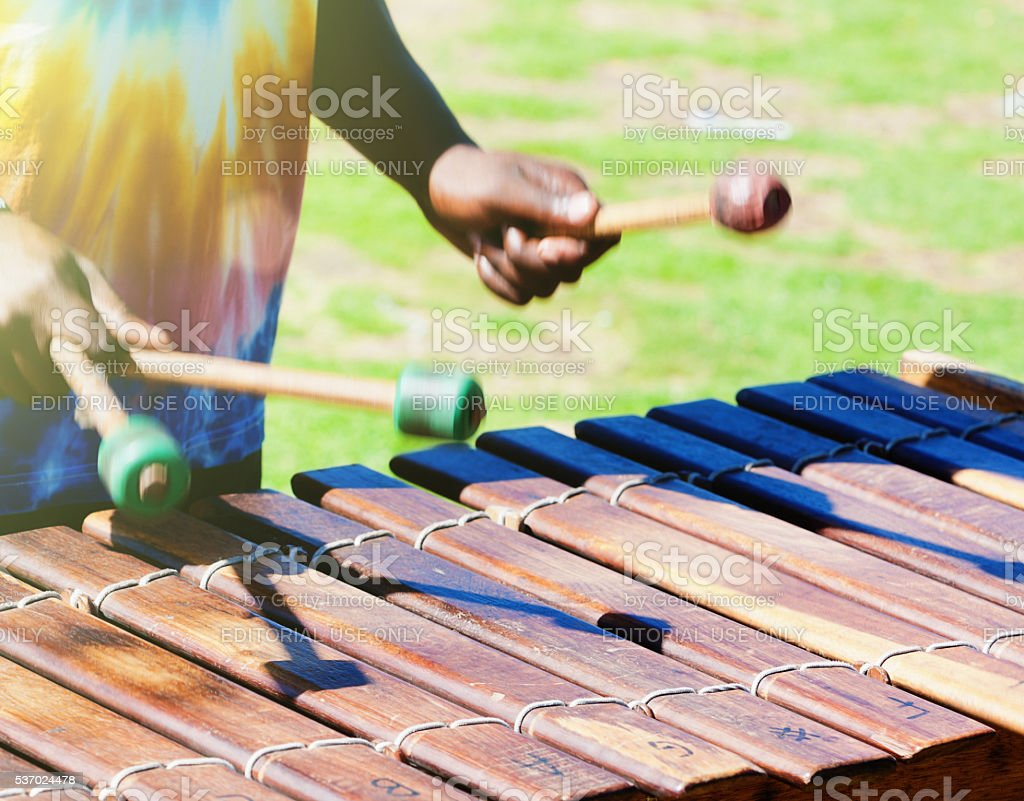Marimba player in South African park, Hermanus, tuneful, energetic stock photo