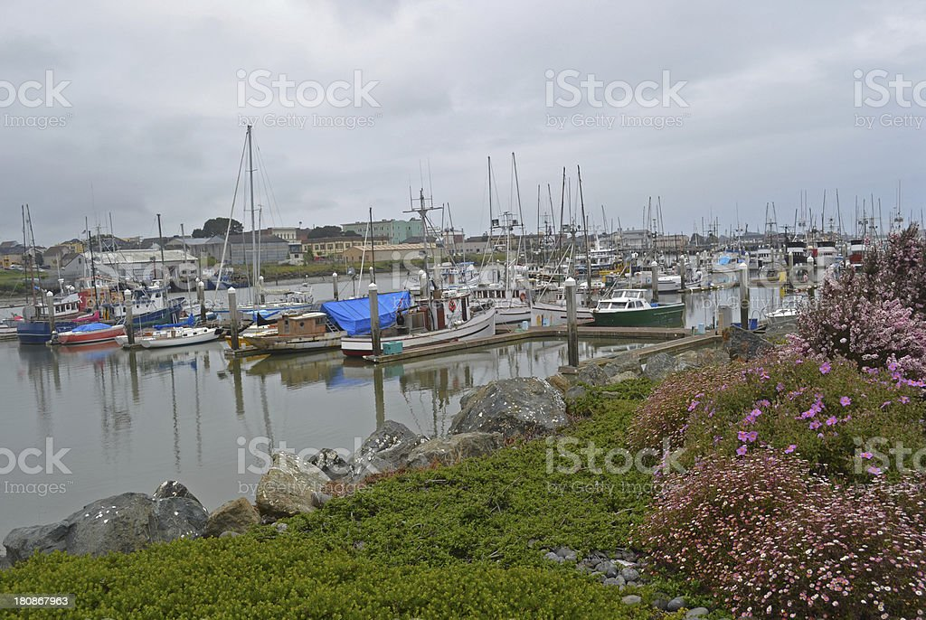 Marina at Humboldt Bay royalty-free stock photo