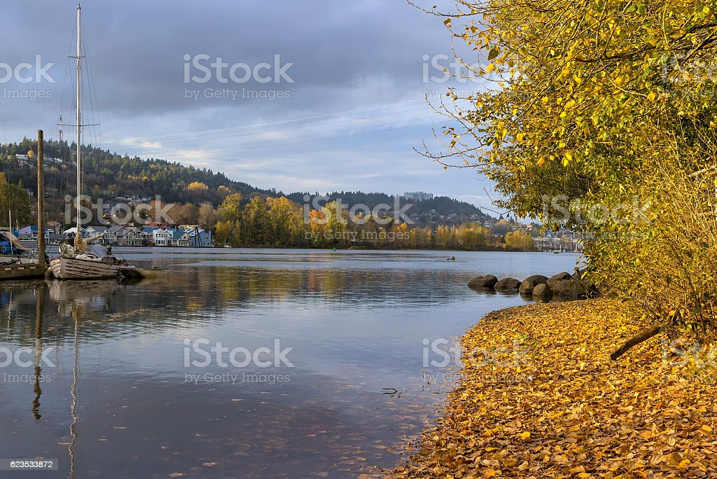 Marina at Sellwood Riverfront Park in Fall stock photo