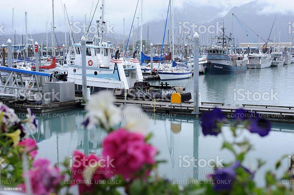 Marina at Seward Port stock photo