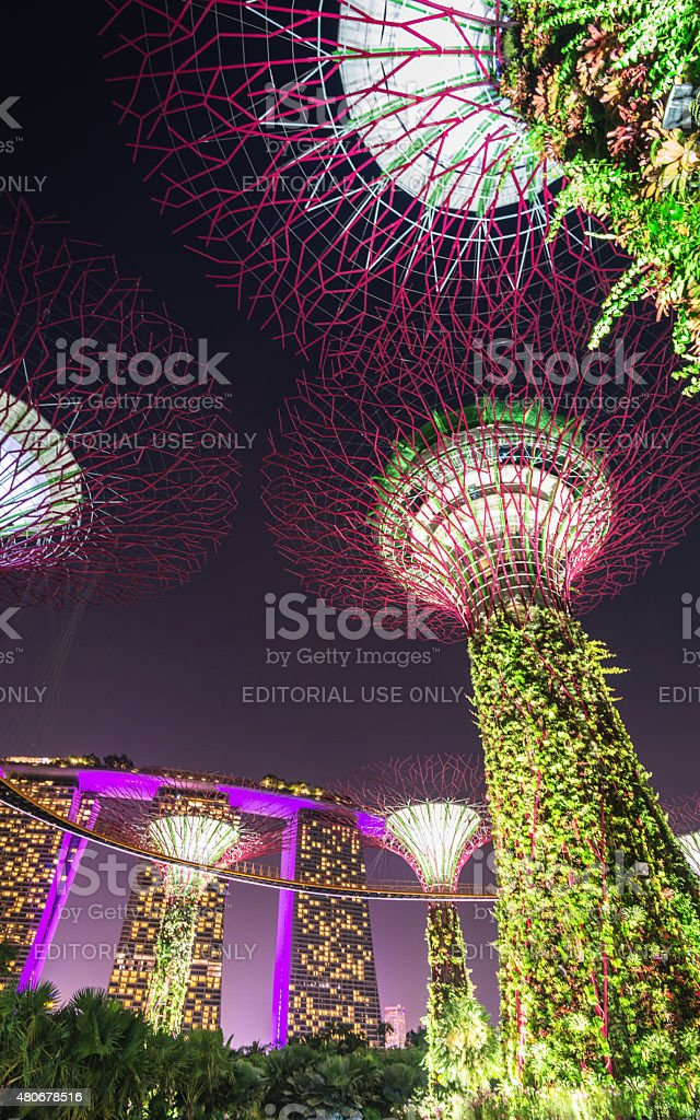 Marina Bay sands Hotel from the Garden by the Bay stock photo