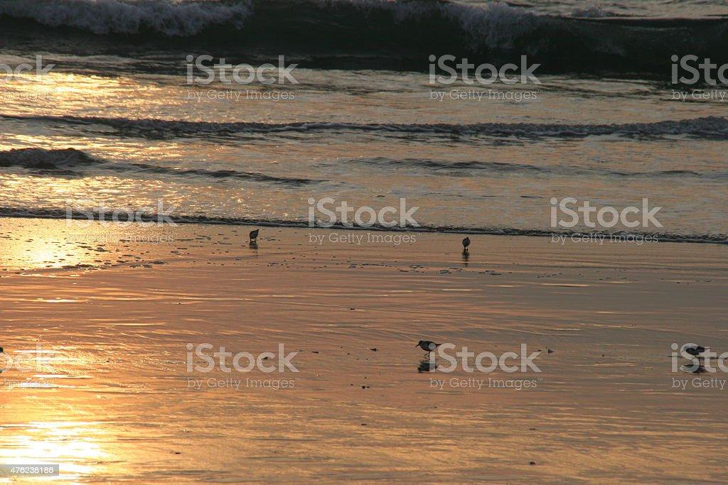 Marina del Rey Sunset stock photo