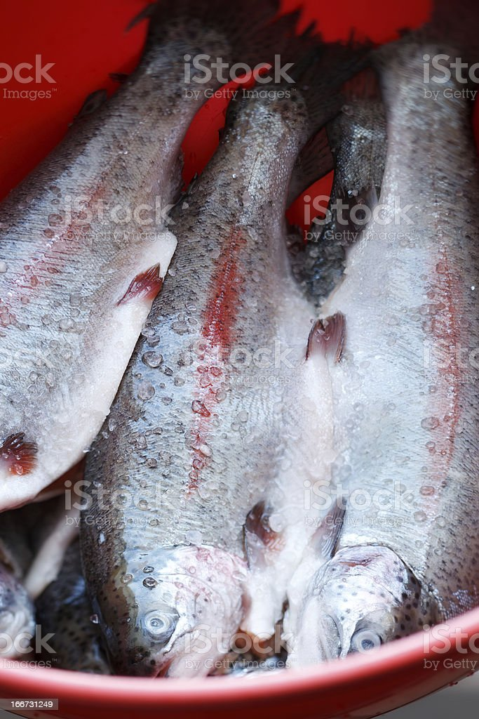 Marinated trout royalty-free stock photo