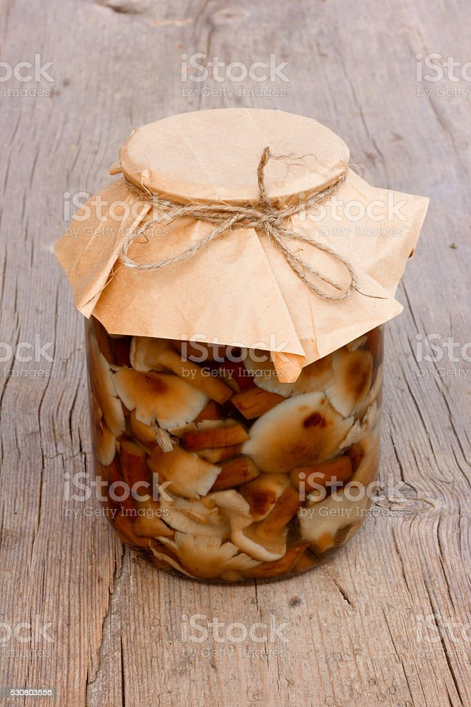 marinated wild edible mushrooms stock photo
