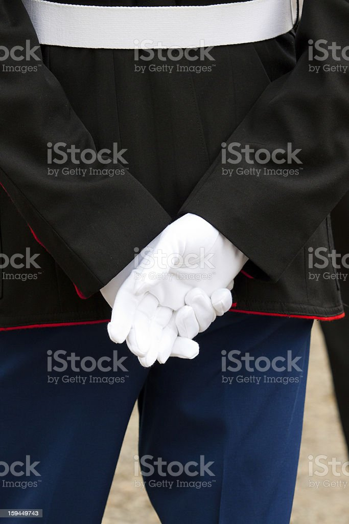 Marine At Attention royalty-free stock photo