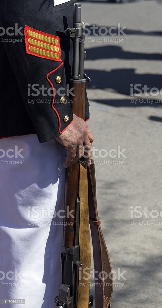 Marine Honor Guard Detail royalty-free stock photo