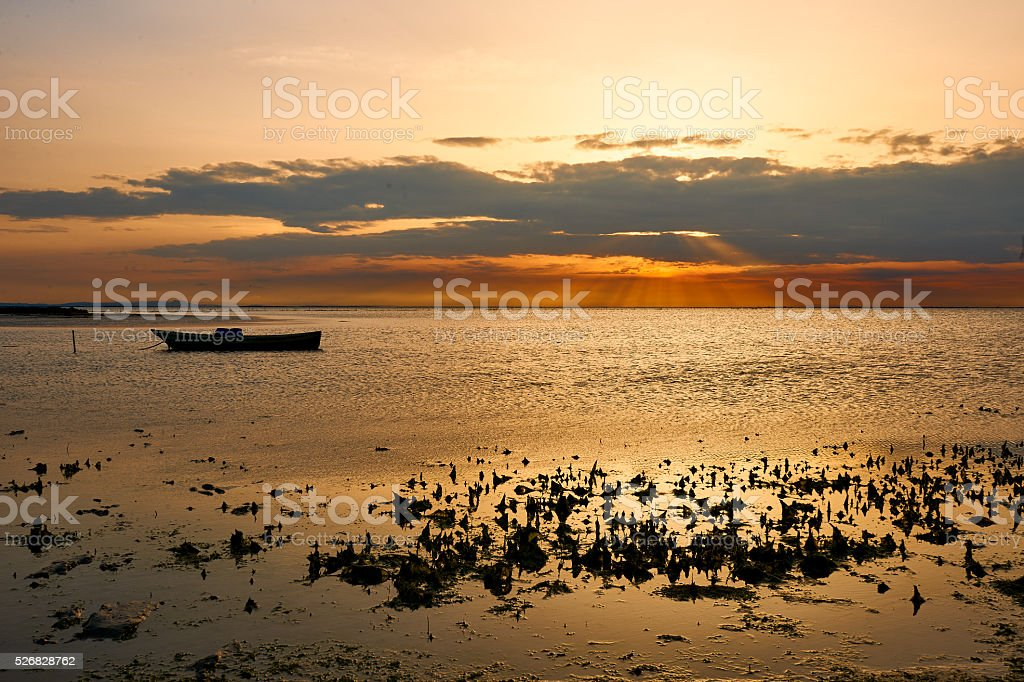 Marine landscape with boat, in France (Camargue) stock photo