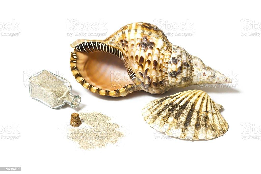 Marine sea shells and sand bottle royalty-free stock photo