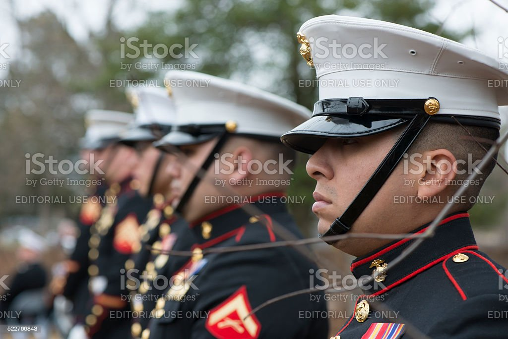 Ceremonial Honor Guard stock photo