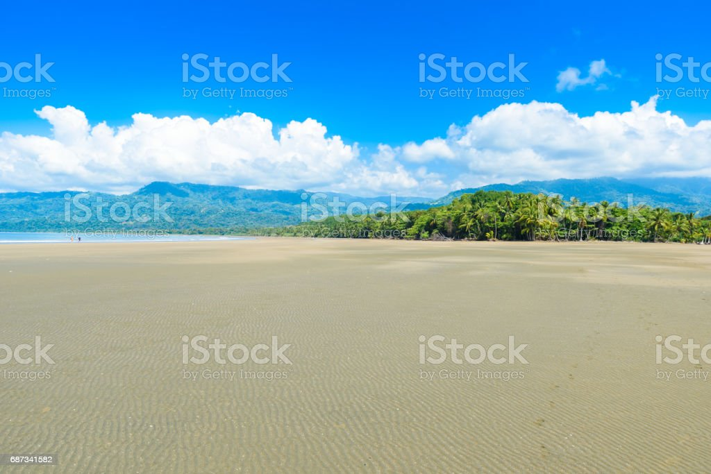 Marino Ballena National Park in Uvita - beautiful beaches and tropical forest at pacific coast of Costa Rica stock photo