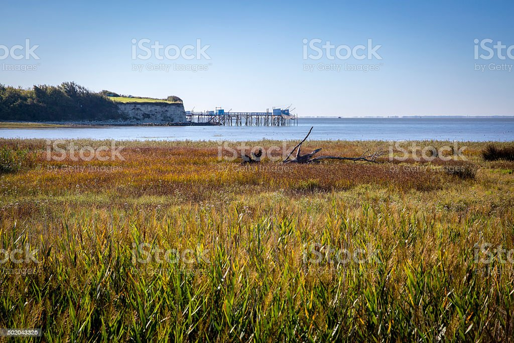 maritime seaside landscape Gironde estuary with firsherman huts, France stock photo