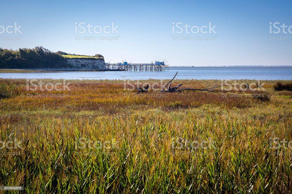 maritime seaside landscape Gironde estuary with firsherman huts, France stock photo
