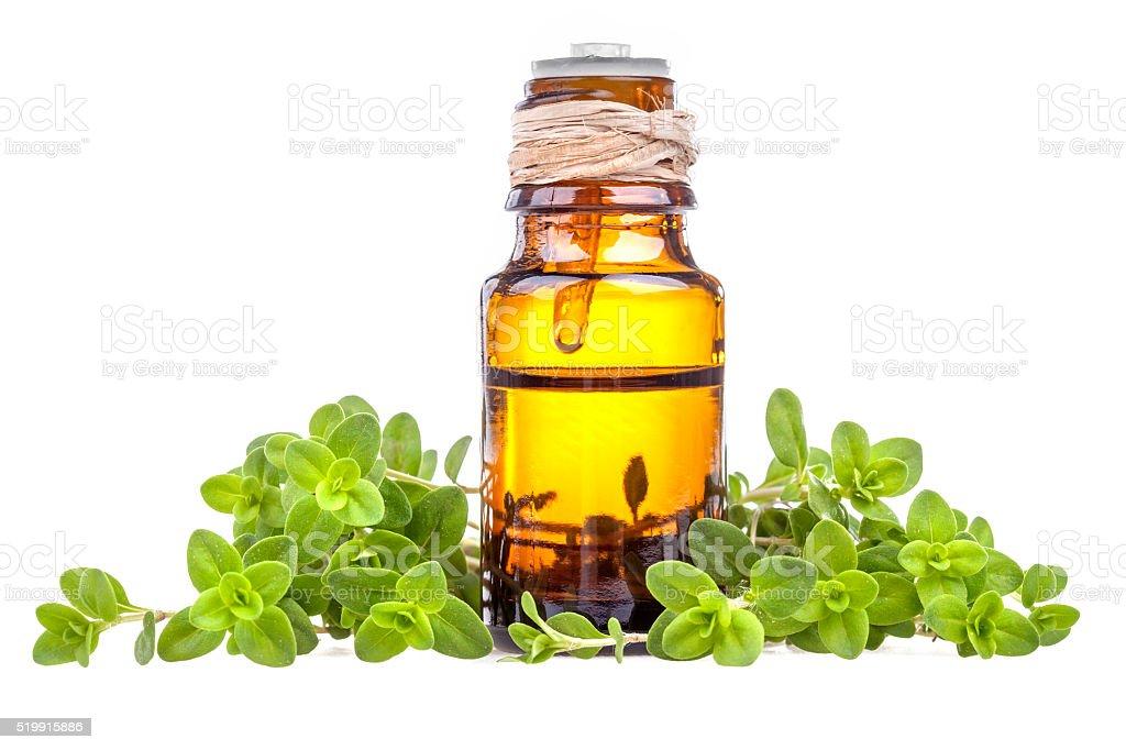 marjoram essential oil stock photo