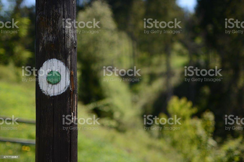 Marked tree stock photo