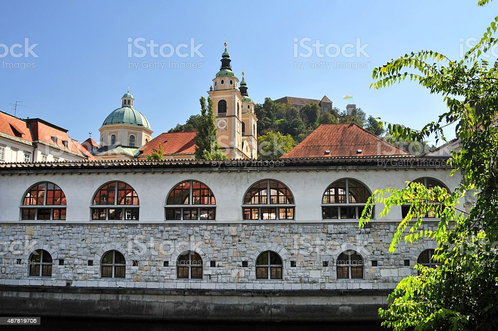 Market and St. Nicholas cathedral in background, Ljubljana, Slovenia stock photo